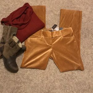 Bnwt The Limited Suede Pants